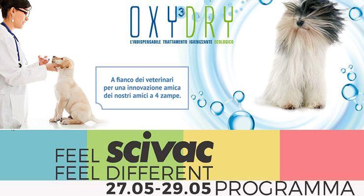Congresso internazionale Scivac Rimini 2016