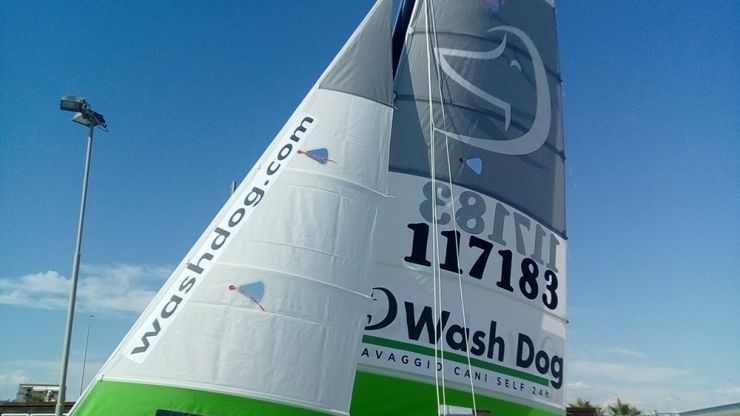 Wash Dog Sailing team: i risultati del 2017