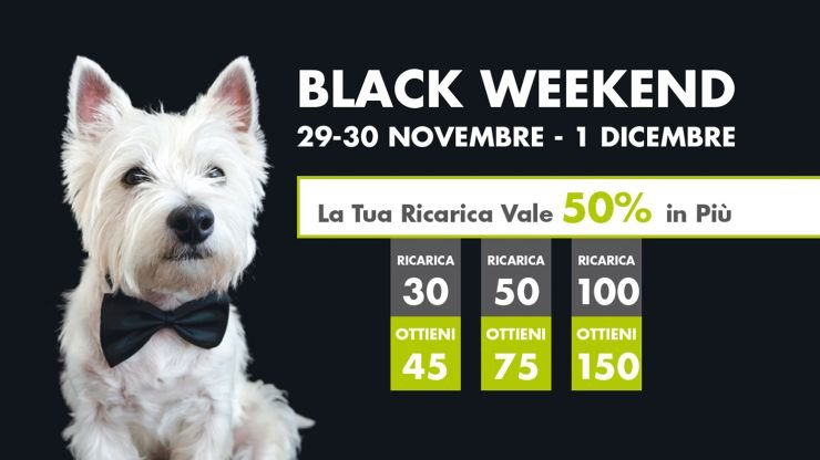 Promo Black Weekend 2019